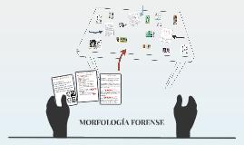 MORFOLOGÍA FORENSE