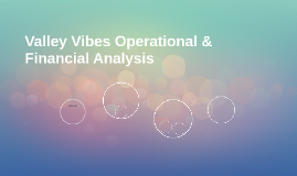 Valley Vibes Operational & Financial Analysis