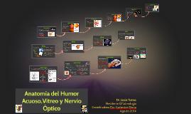Anatomía del Humor Vítreo, Acuoso y Nervio Optico