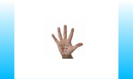 five finger fizics rule