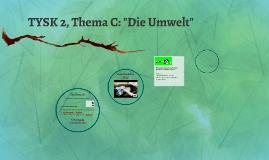 2TYSK2: Thema B
