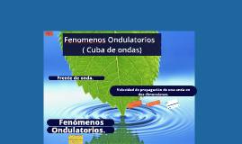 Fenomenos Ondulatorios ( Cuba de ondas)