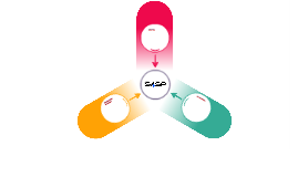 S4SP e os atores do processo assistencial