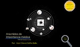Arácnidos de Importancia médica