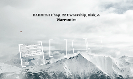 BADM 351 Chap. 21 Ownership and Risk