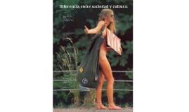 Diferencia entre sociedad y cultura.