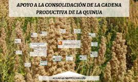 Copy of Copy of La actividad productiva de la quinua en el Departamento del