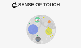 SENSE OF TOUCH