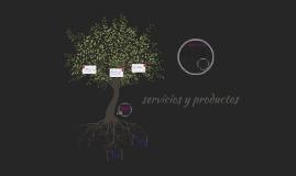 servicios y productos