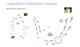 Cooperative/Collaborative learning