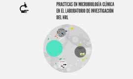 PRACTICAS EN MICROBIOLOGÌA CLÌNICA EN EL LABORATORIO DE INVE