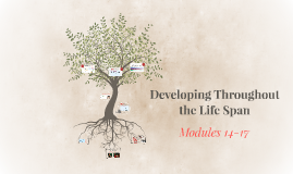 Modules 14-17: Developing Throughout the Life Span