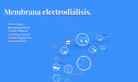 Membrana electrodiálisis.