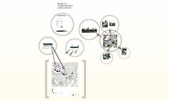 MCS wireless planning