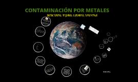 CONTAMINACIÓN POR METALES