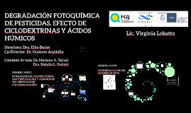 degradación fotoquimica de pesticidas. Efecto de ciclodextrinas y ácidos húmicos