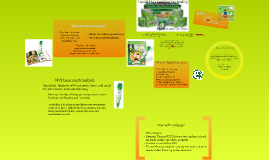 Copy of LeapFrog Tag Reading Center