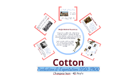 Copy of AP World - Cotton Production & Exportation (1750~1900)