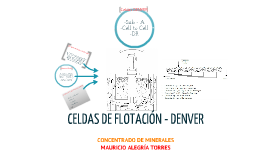 Copy of Celdas de Flotacion DENVER