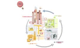 Palestra Cidades Sustentáveis