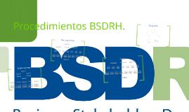 Procedimientos BSDRH.