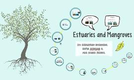 Copy of Estuaries and Mangroves