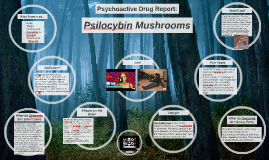 Psychoactive Drug Report: