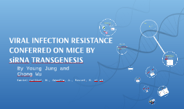 Viral infection resistance conferred on mice by siRNA transg