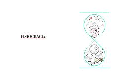 Copy of FISIOCRACIA
