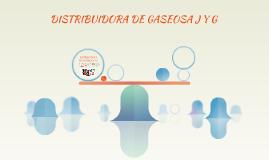 DISTRIBUIDORA DE GASEOSA J Y G
