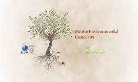 Public Environmental Concerns