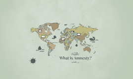 What is Amnesty?