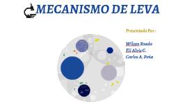 MECANISMO LEVA