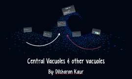 Central Vacuoles & other vacuoles