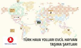 Copy of TÜRK HAVA YOLLARI EVCİL HAYVAN TAŞIMA ŞARTLARI