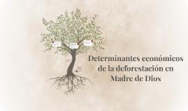 Determinantes económicos de la deforestación en Madre de Dio