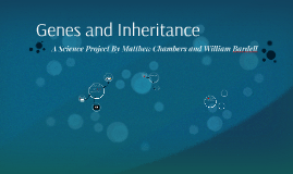 Genes and Inheritance