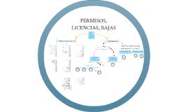 PERMISOS LICENCIAS BAJAS