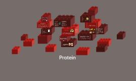 Protein Intro