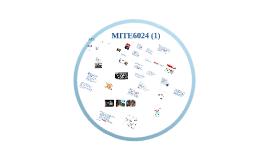 MITE6024 (1)