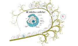 Copy of El núcleo celular