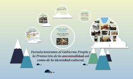 Fortalecimientos al Gobierno Propio y la Protección de la an