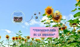 FENOMENOLOGIA DE LA JORNADA