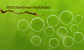 FGCU Food Forest Final Project