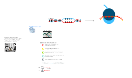 The Central Dogma P.3
