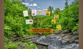 Copy of BIOINDICADOR AGUA, SUELO Y AIRE