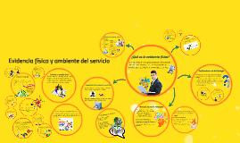 Copy of Evidencia física y ambiente del servicio