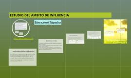 ESTUDIO DEL AMBITO DE INFLUENCIA