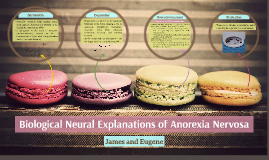 Biological Neural Explanations of Anorexia Nervosa