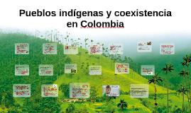 Pueblos indígenos y coexistencia en Colombia